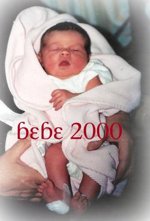 bebe 2000