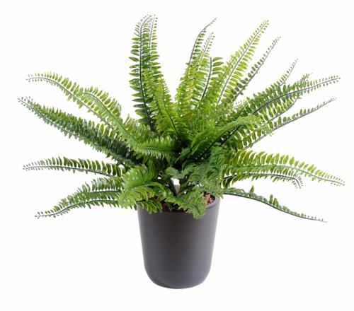 plante artificiel