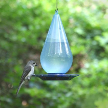 abreuvoir oiseaux