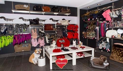 boutique pour chien