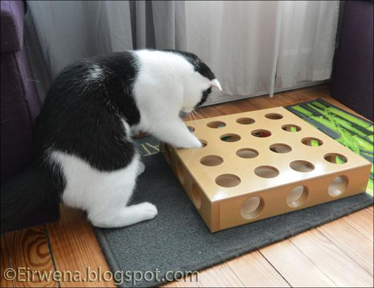 casse tete pour chat