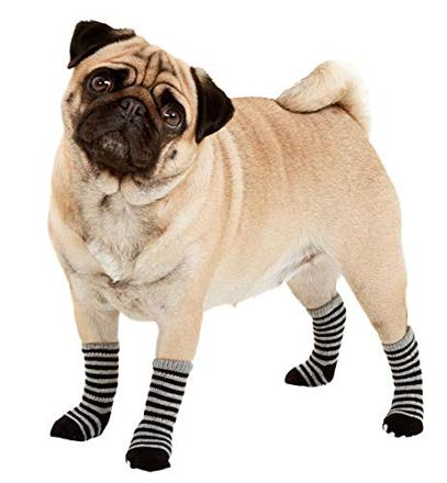 chaussette chien
