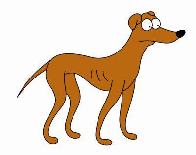 chien simpson
