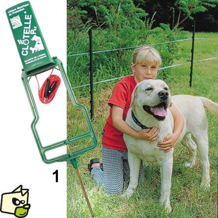 cloture electrique chien