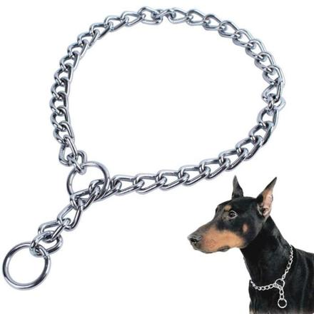 collier chaine chien