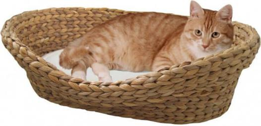 corbeille pour chat
