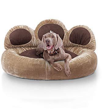 couchage chien