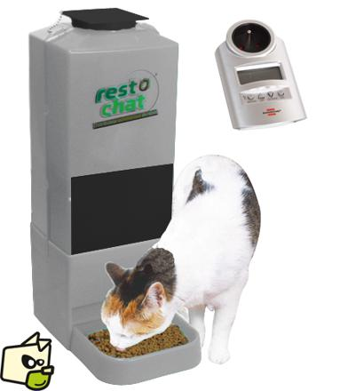 distributeur automatique de croquettes pour chat