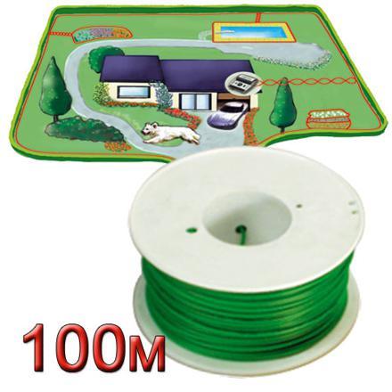 fil electrique pour chien