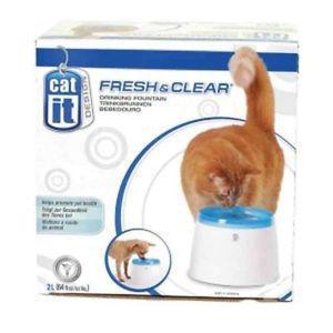fontaine cat it