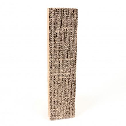 griffoir chat carton