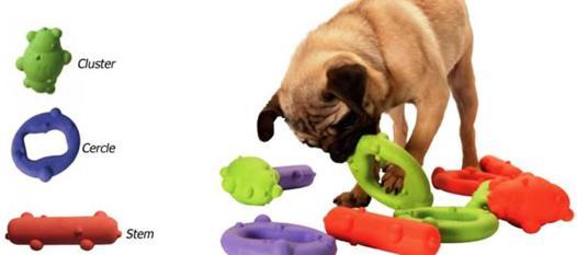 jouet indestructible pour chien