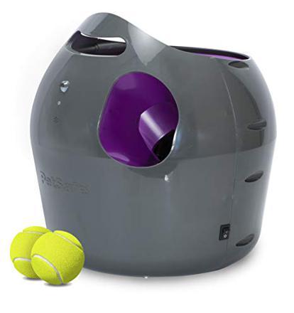 lanceur balle chien