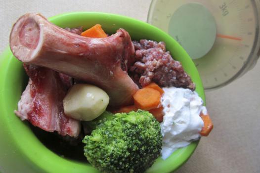 nourriture barf chien