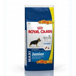 royal canin maxi junior 15kg 3kg gratuits