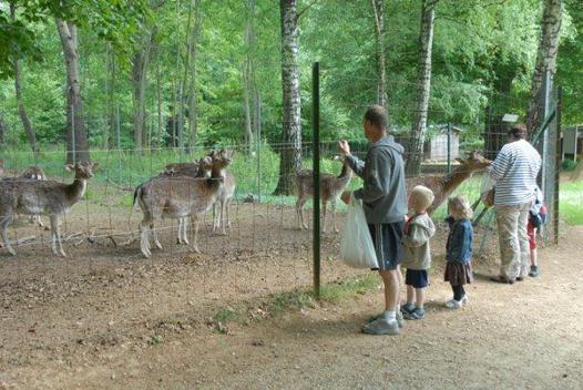 site animalier