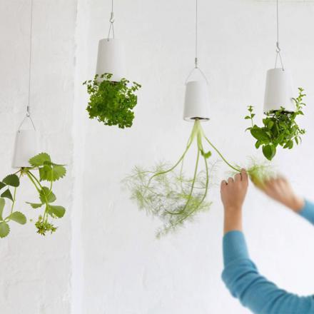 pot plante suspendu
